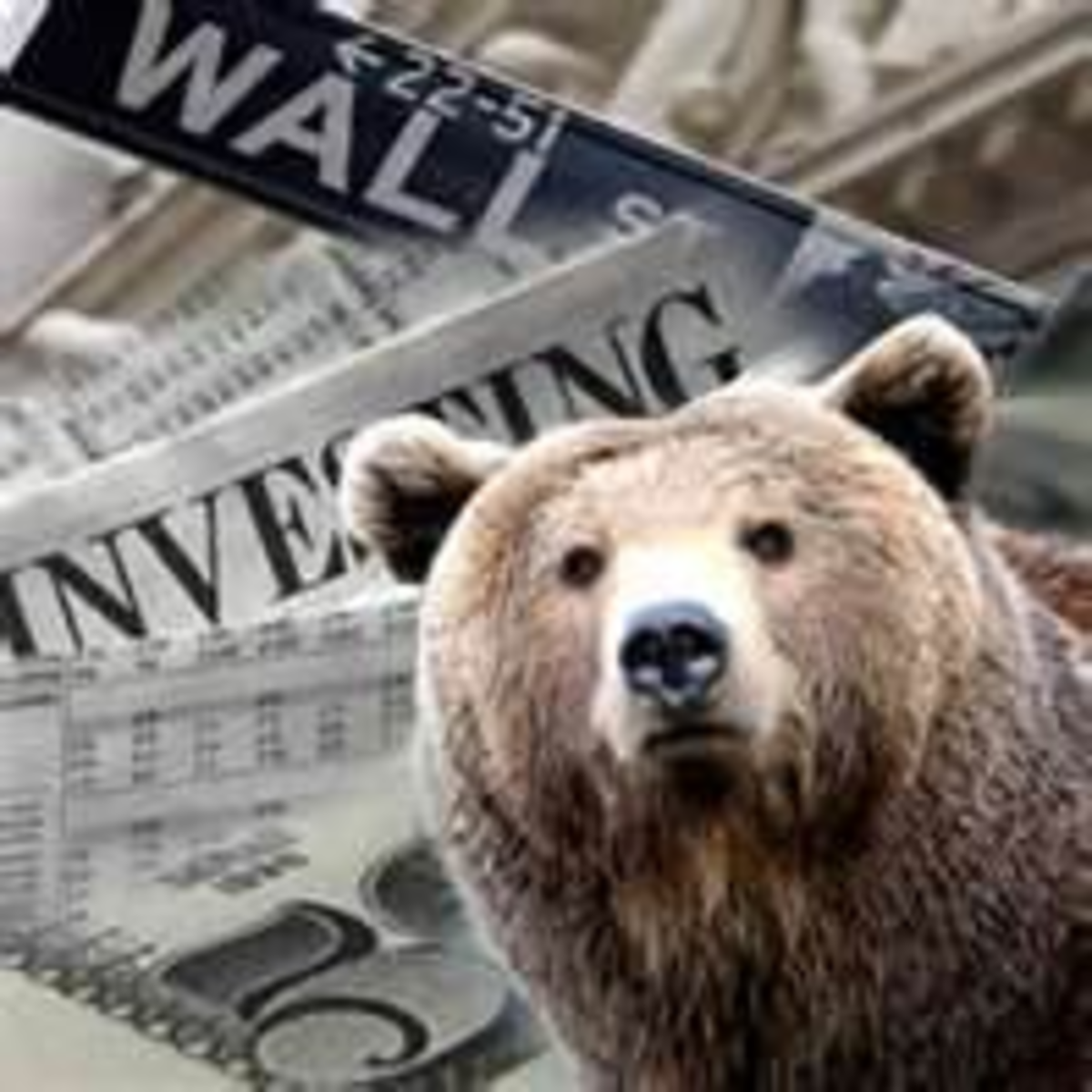 Making Money During a Bear Market