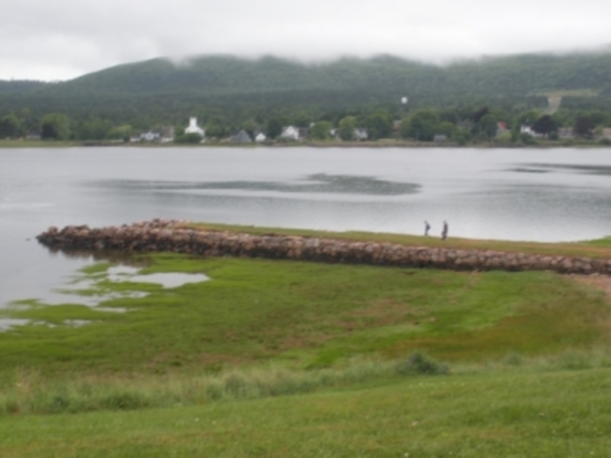 Fort Anne's Abandoned Wharf on the Annapolis River