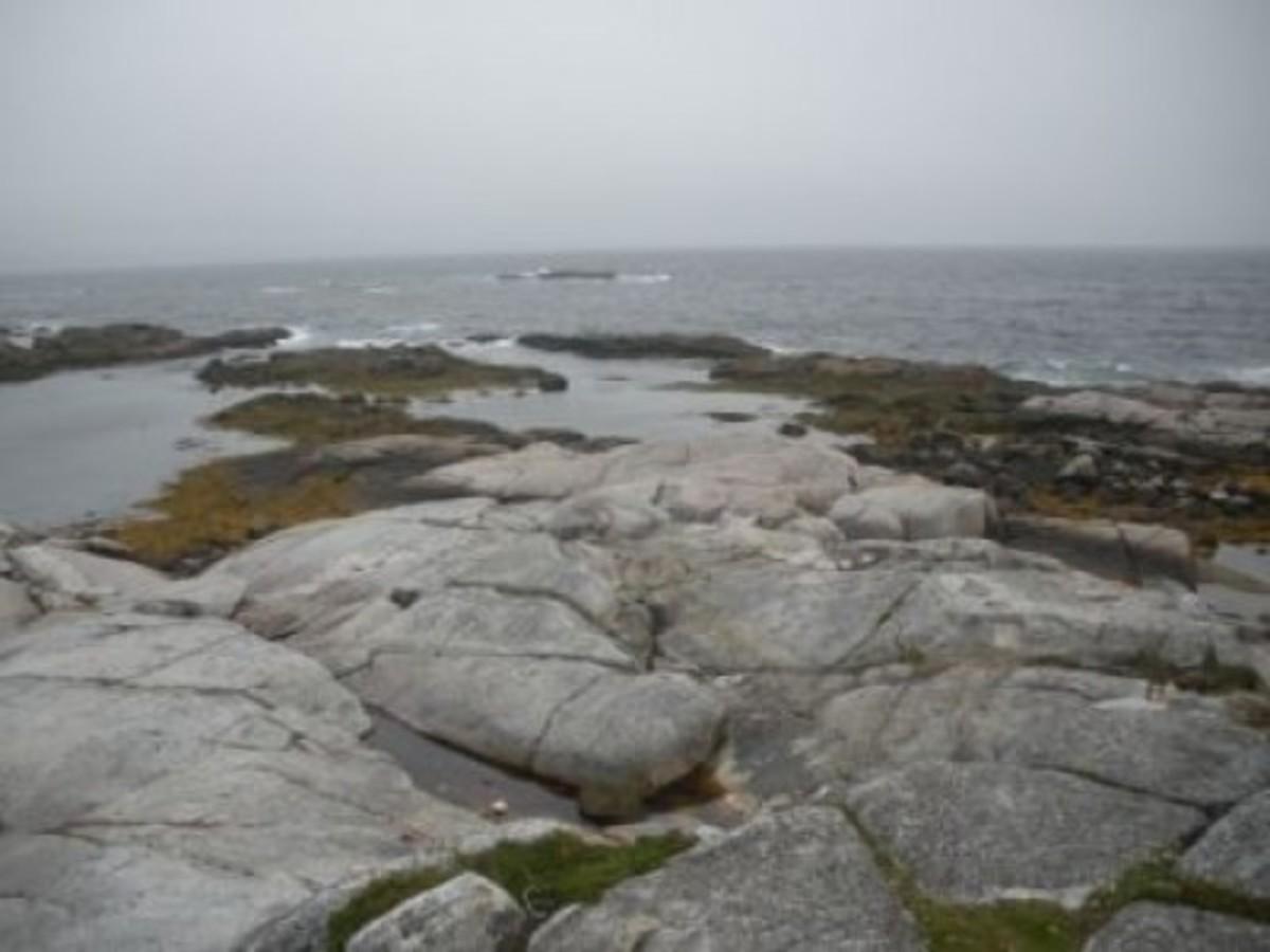 Nova Scotia Shoreline Near Peggys Cove!