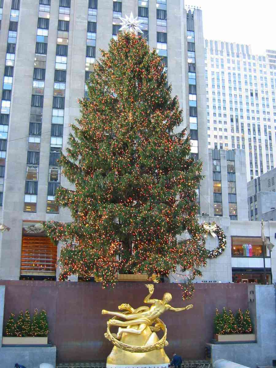 The Rockerfeller Center Christmas Tree Lit Up With Lights