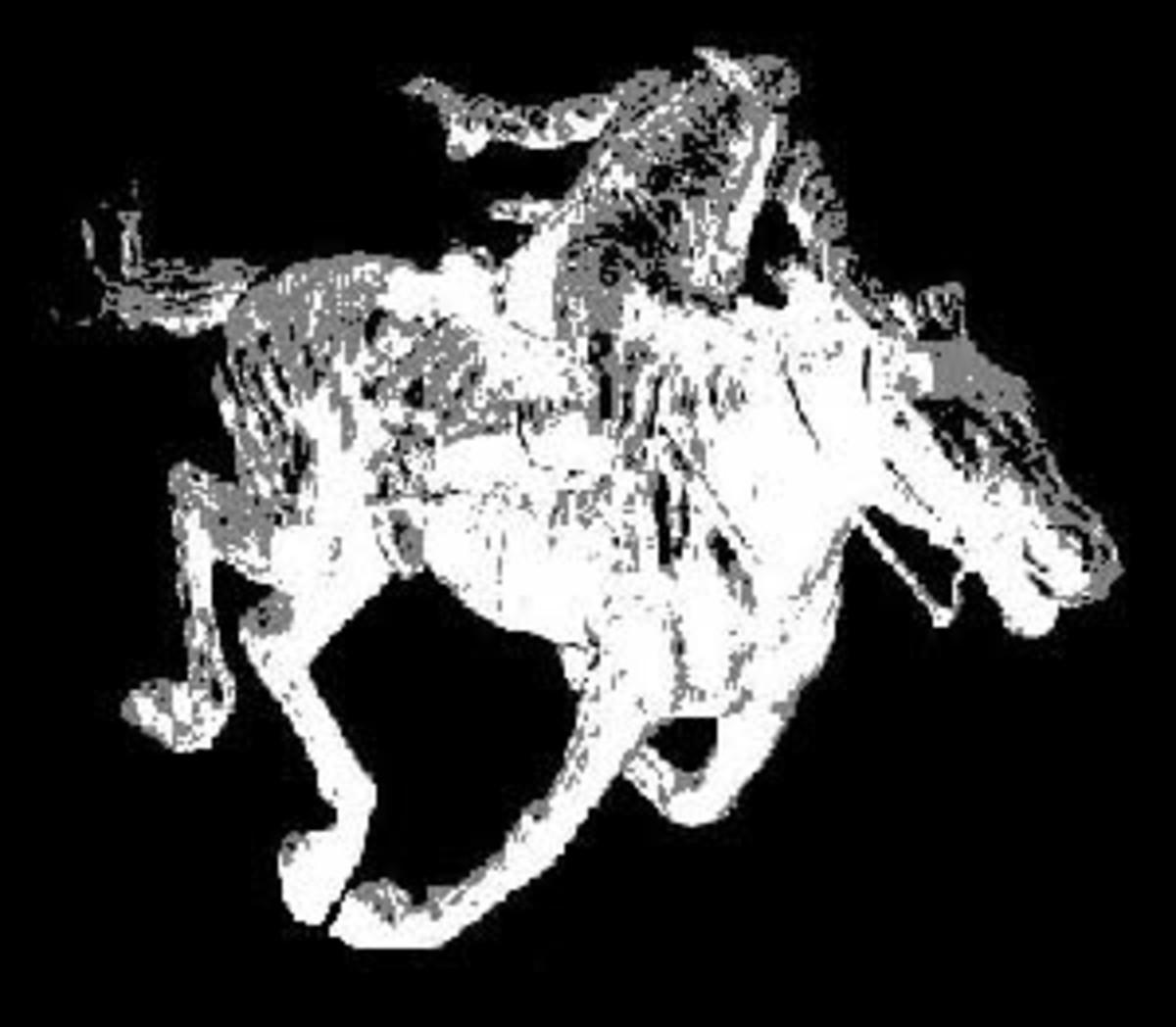 El Muerto rides again!