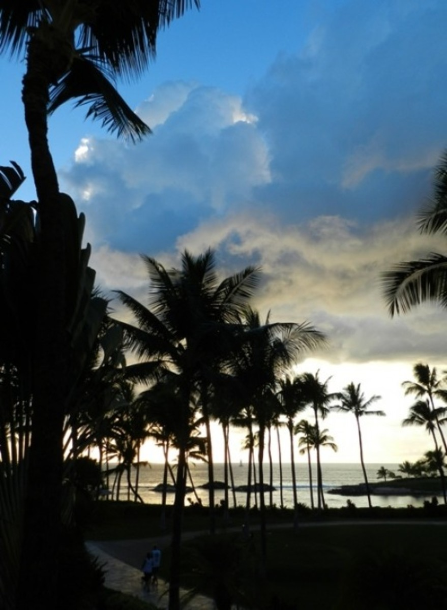 Evening looking toward the lagoon