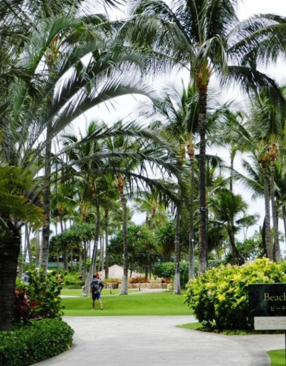 Grounds near the lobby