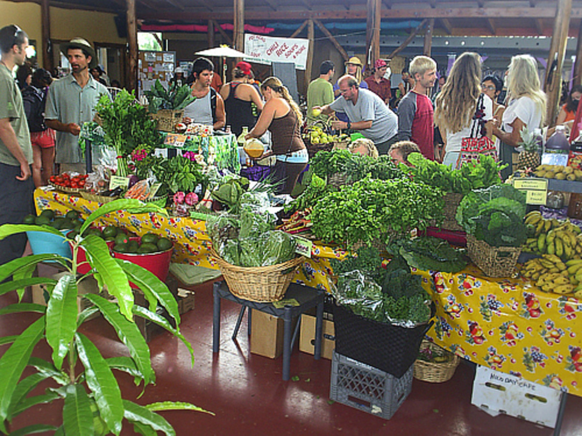 Hidden Hawaii: Funky SPACE farmers market in Puna on the Big Island