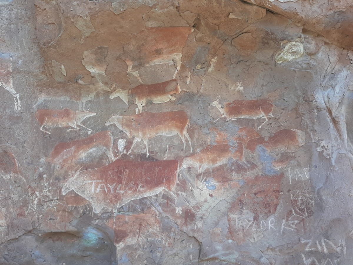Example of amazing Rock Art unfortunately with graffiti