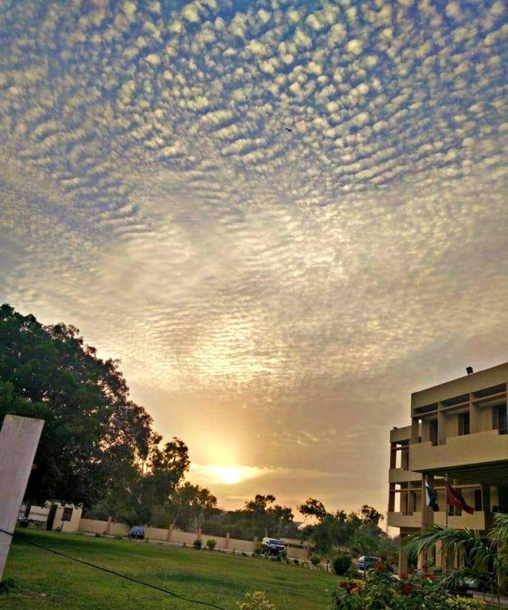 cotton ball sky.