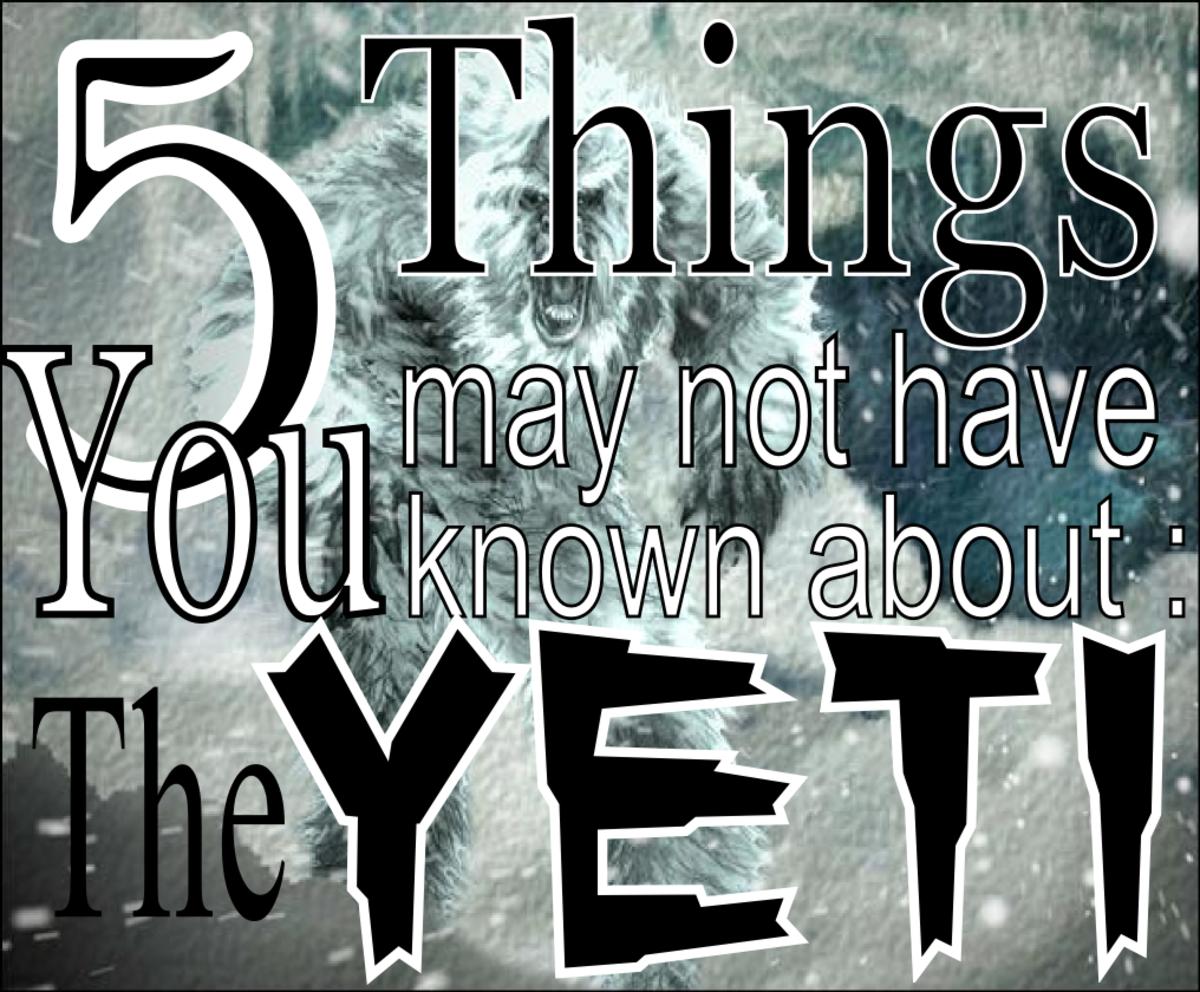 Yeti Facts
