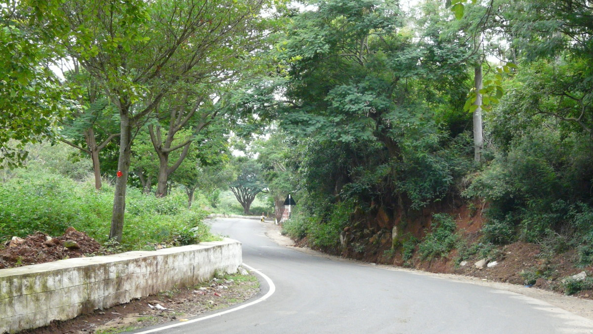 The road to Yelagiri is as good as the destination.