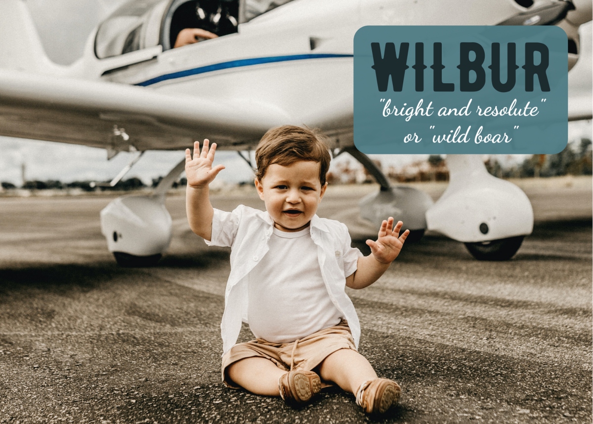 In the U.S., Wilbur saw the most popularity in 1913, when it was the 91st most popular name for boys, per the U.S. Social Security Administration. Is it due for a comeback?