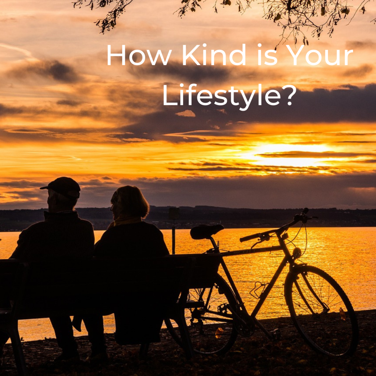 Healthy Aging - Increase Your Life Span