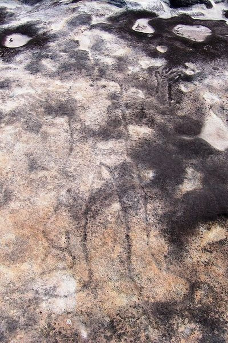 Creator God and Sky Father, Ku-ring-gai Chase-petroglyph, via Waratah Track,   depicting Baiame.