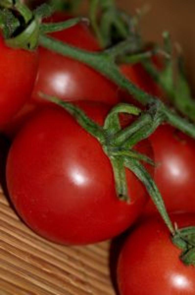 Mmmm...tomatoes
