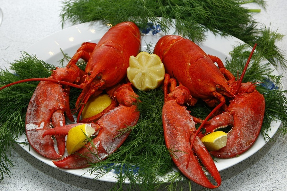 Eating Delicious Lobster Isn't For Everyone