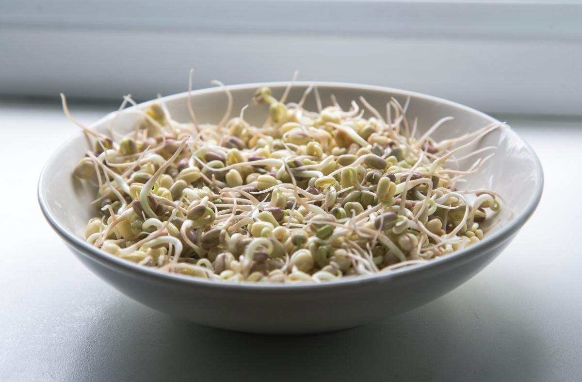 Add tasty and nutritious sprouts to your meals