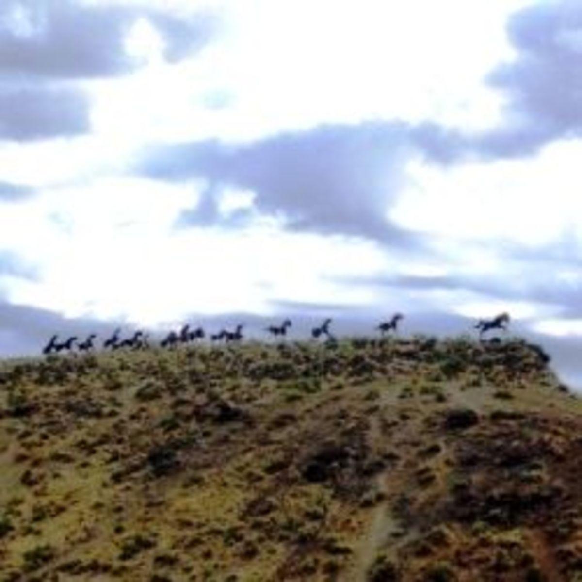 Wild Horses Monument in Washington State