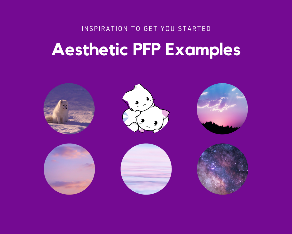 Some aesthetic examples to help inspire you! All images are from free image sites, including Unsplash and OpenClipart.