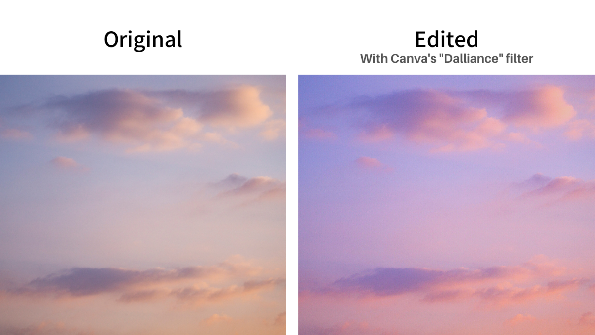 An example showcasing the power of filters! The left-hand photo shows the original and the edited photo is on the right-hand side.