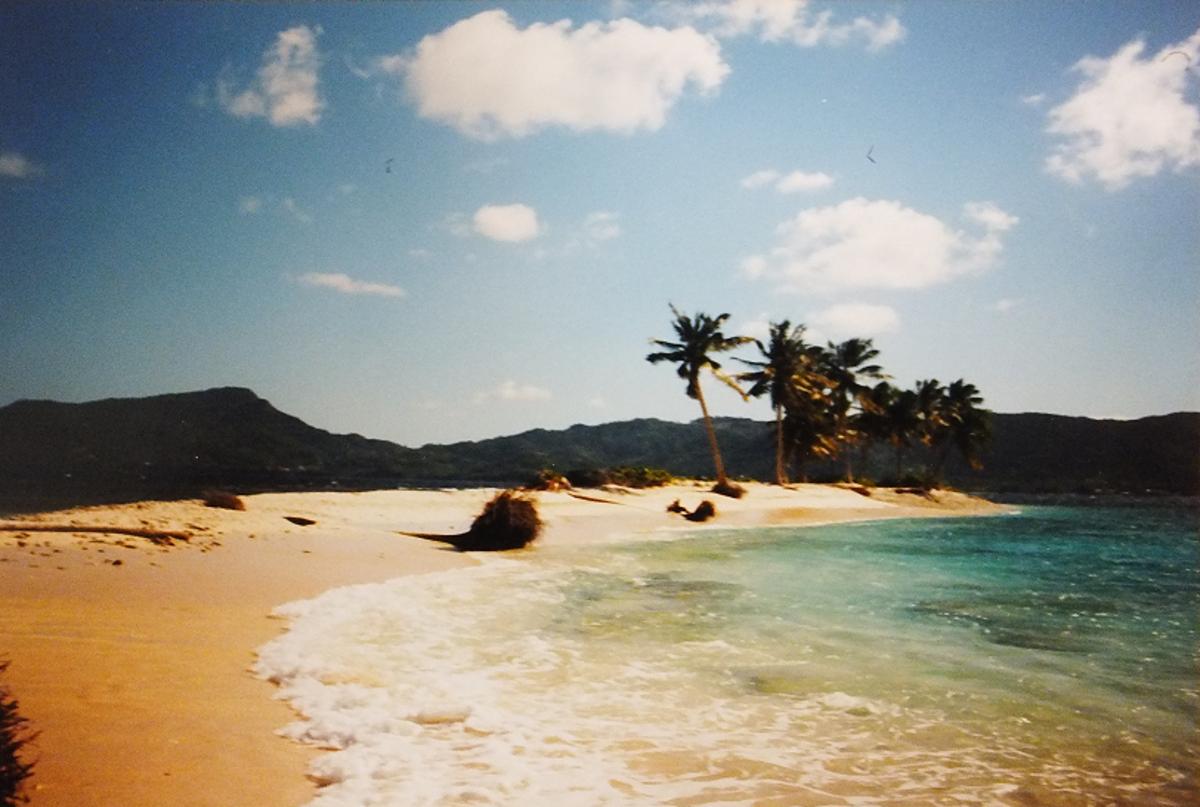 Tropical beach. Taken before phones had cameras.