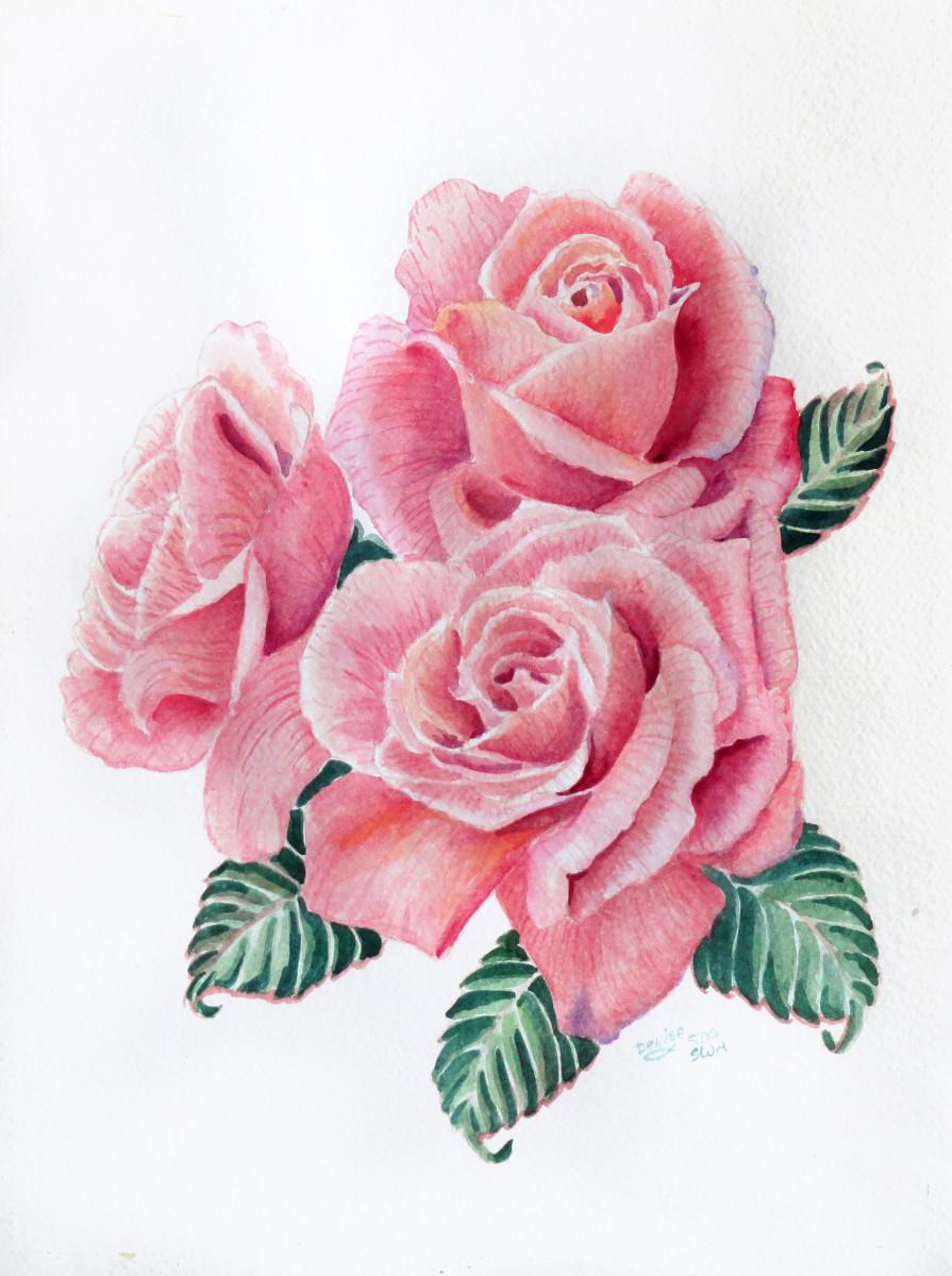 Pink Roses in watercolor