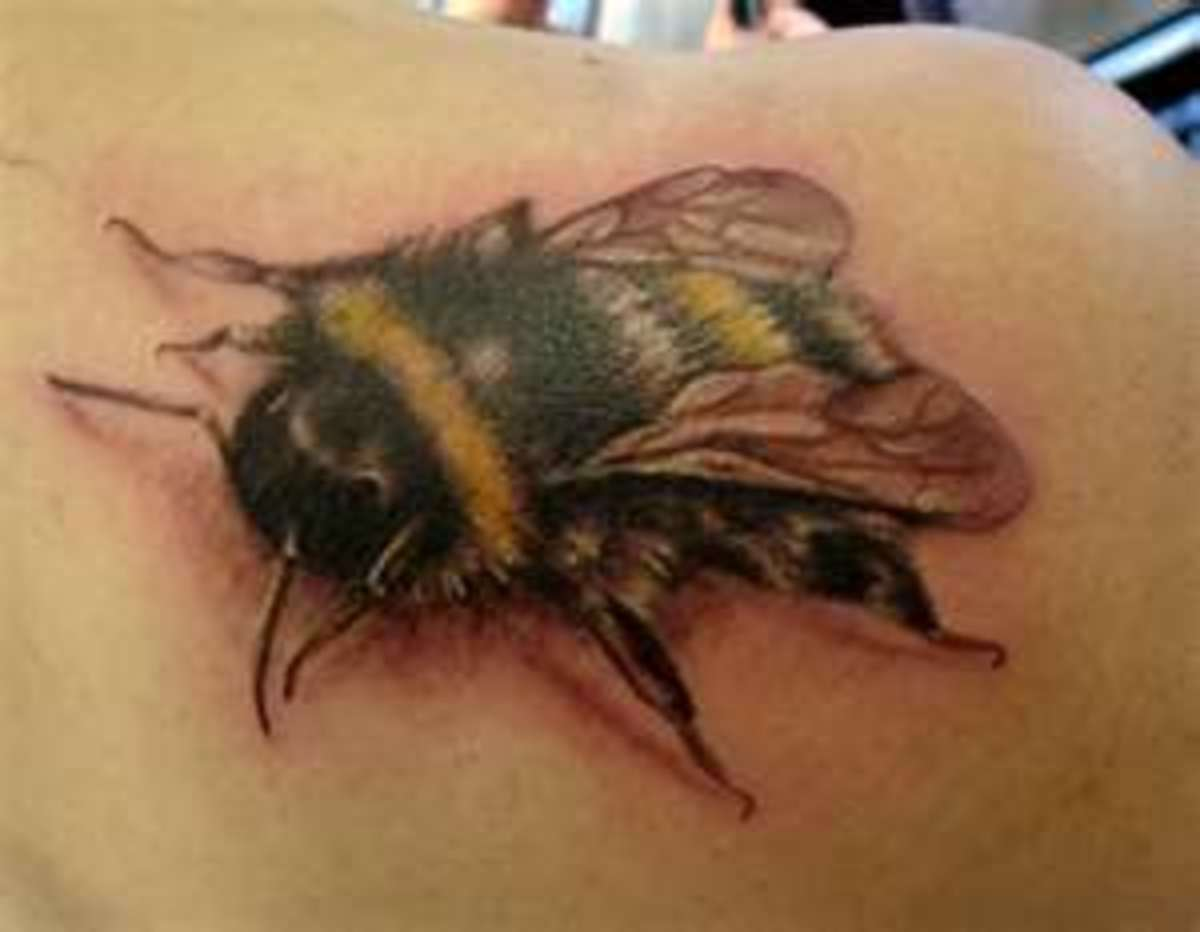 Realistic Cute Queen Bee Tattoo Designs