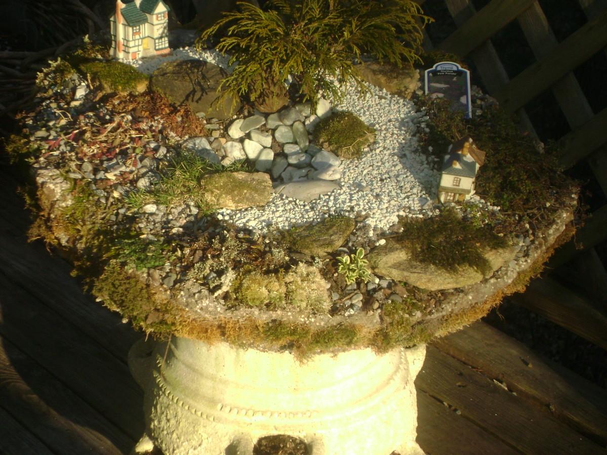Miniature Gardens, Trough
