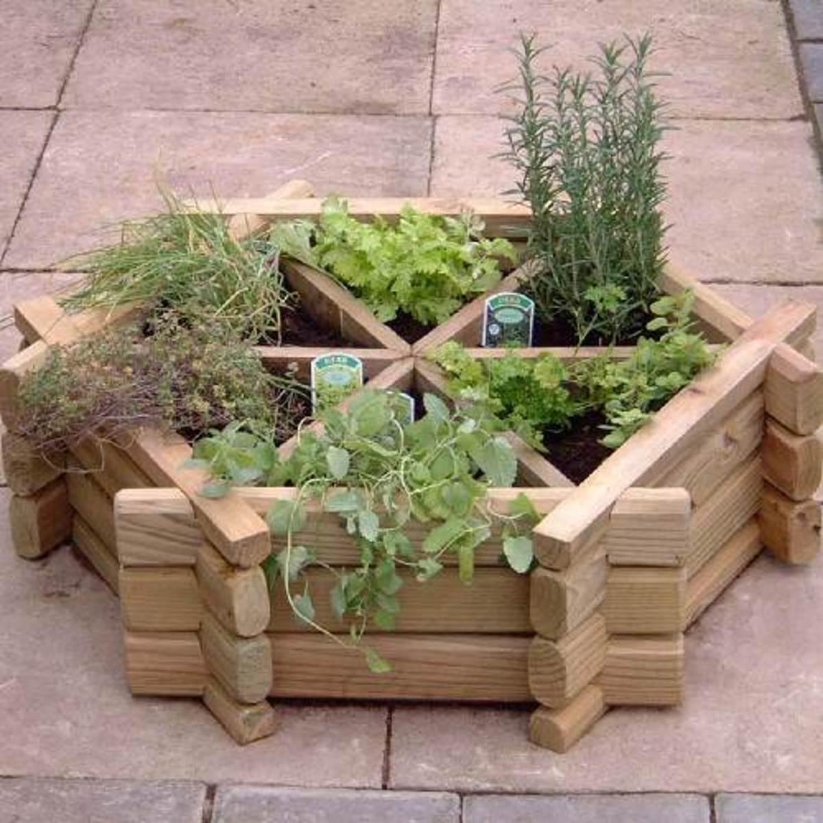 Starting Your Herb Garden