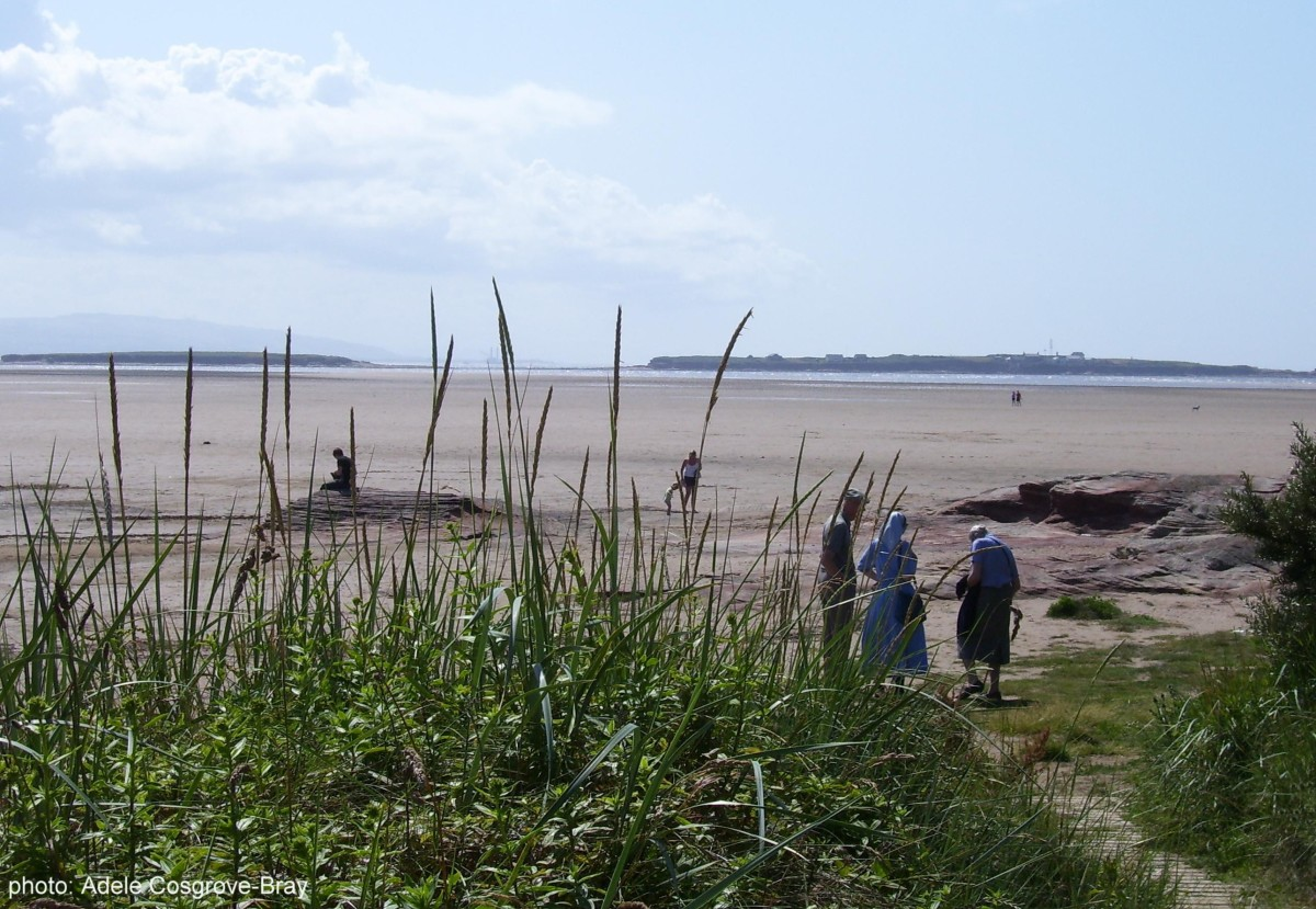 Emerging from the boardwalk, you arrive at a red sandstone outcrop.  On the horizon are Middle Eye and Hilbre Islands.  If you walk along the adjacent Stanley Road you'll find a good choice of bars and restaurants in Hoylake.