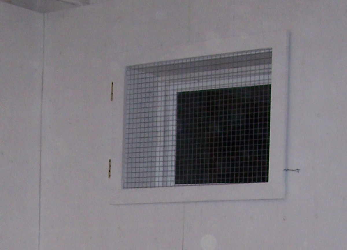 Cover Windows with Hardware cloth or Welded Wire