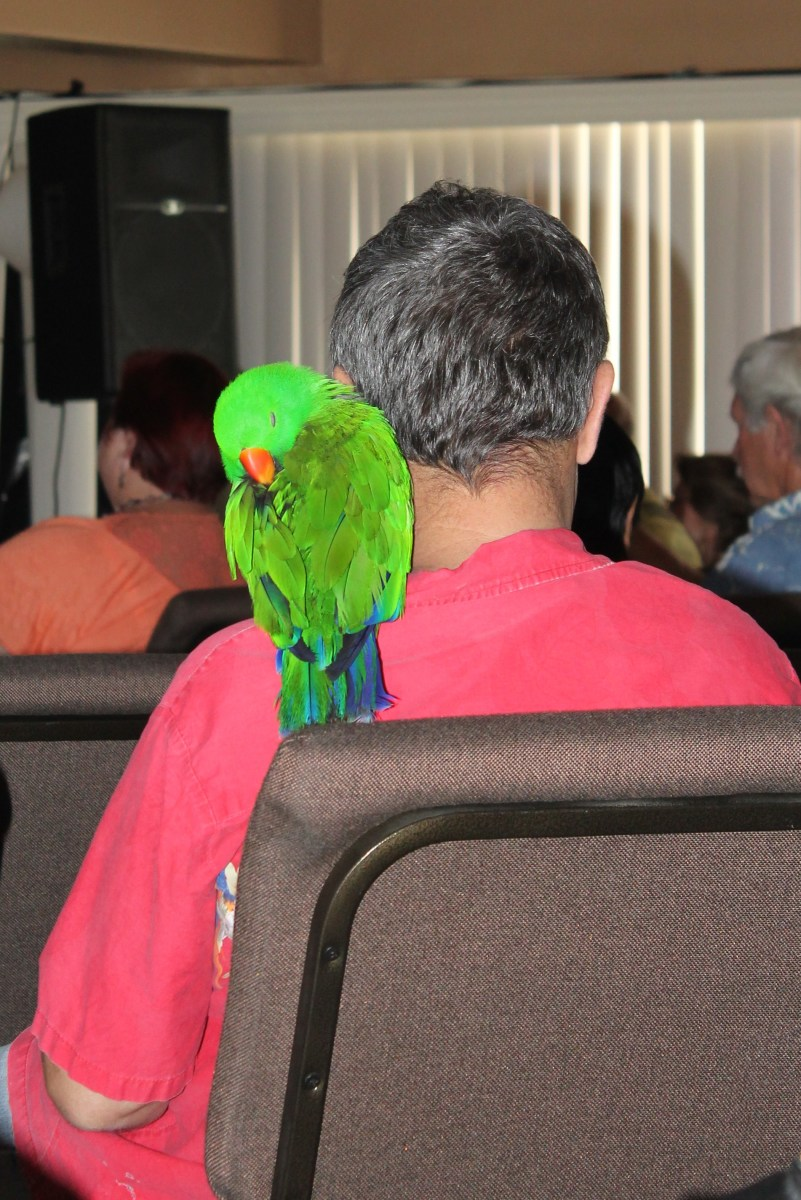 A UFO conference attendee with his human friend.