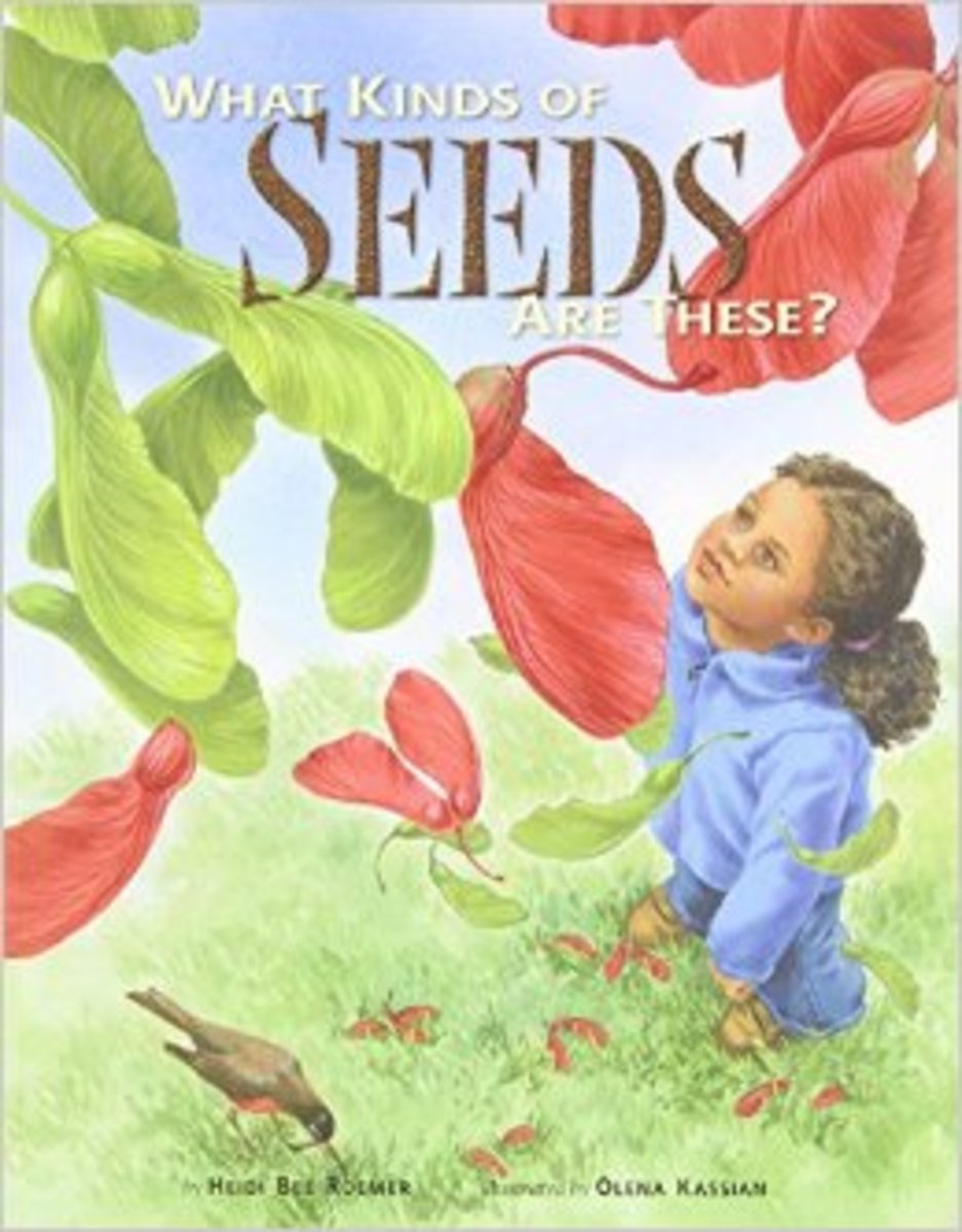 What Kinds of Seeds Are These? by Heidi Bee Roemer