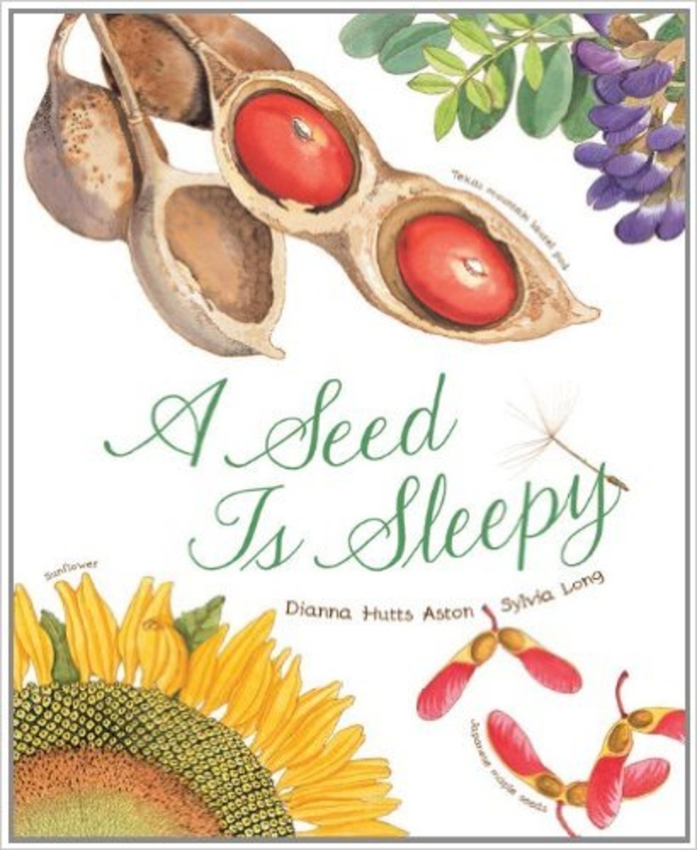 A Seed Is Sleepy by Dianna Aston