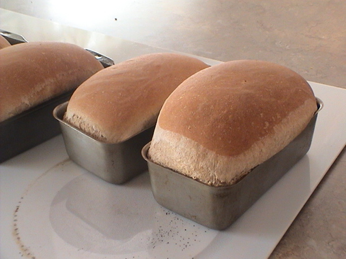 This bread only raised once in the pan...