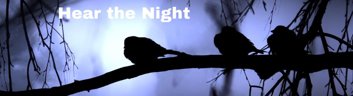 Hear the Night