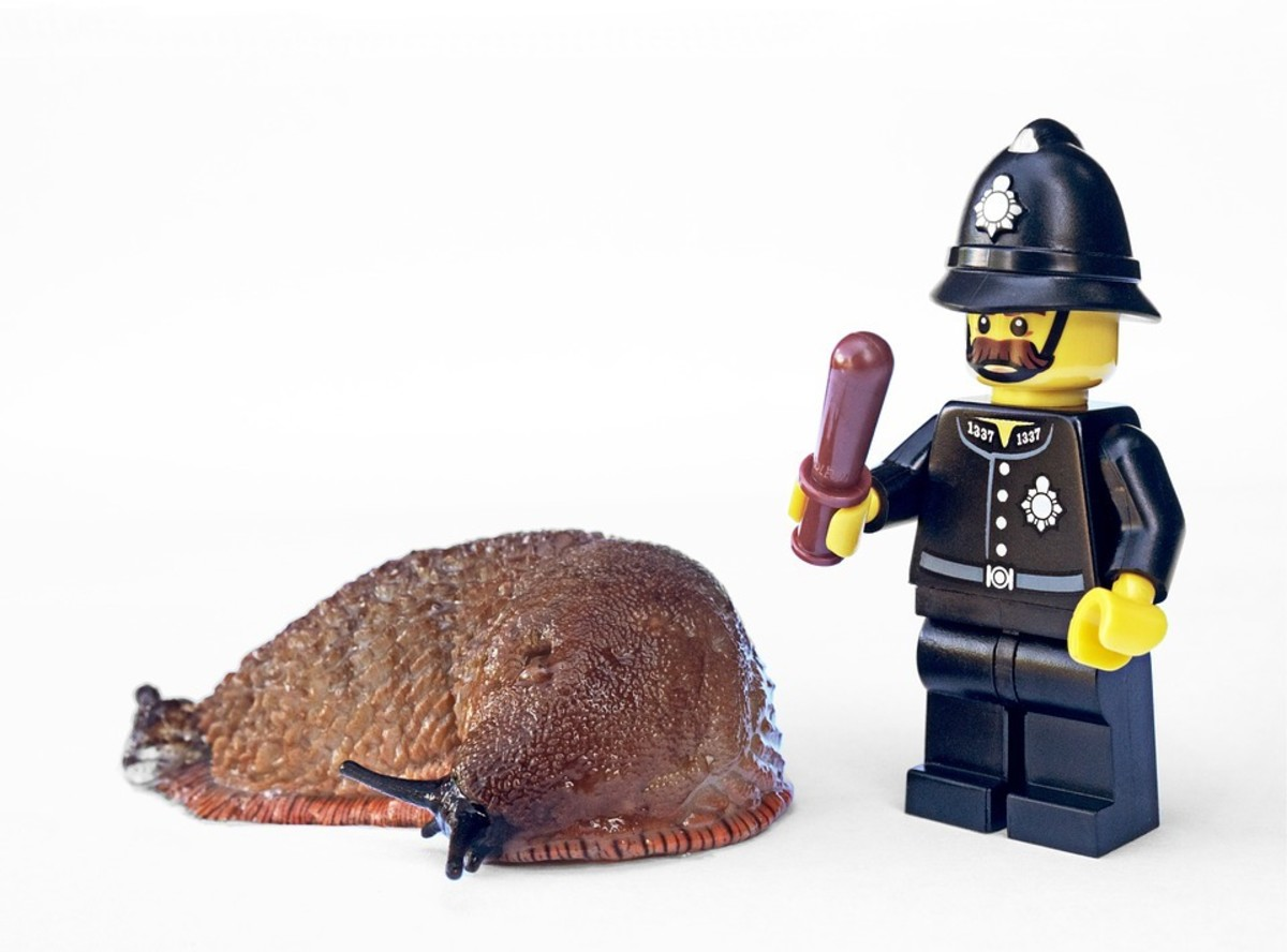 """You're under arrest. Please come along quietly."""