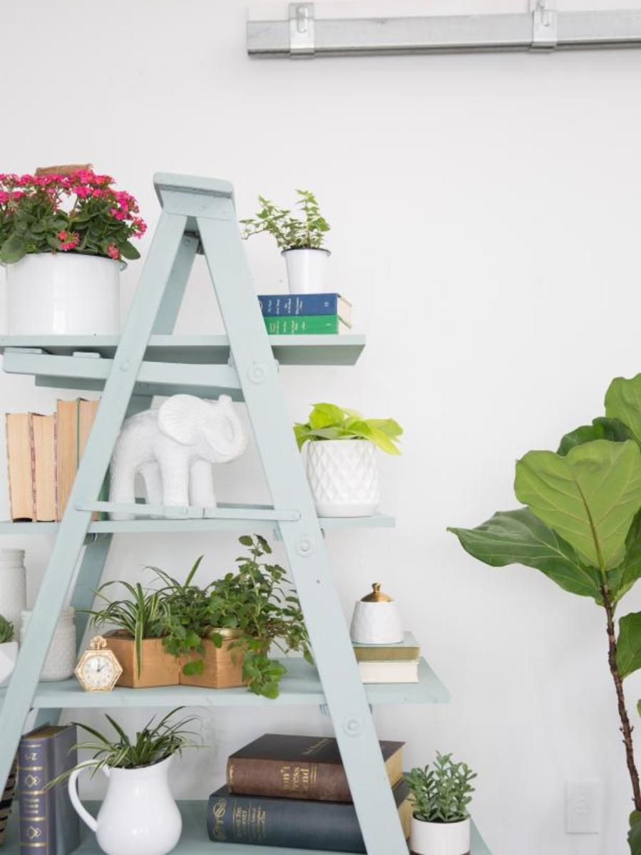 Make a statement storage item for your home by transforming an old wooden ladder. Fill it with books, trees, framed pictures, or something else you'd like to show.