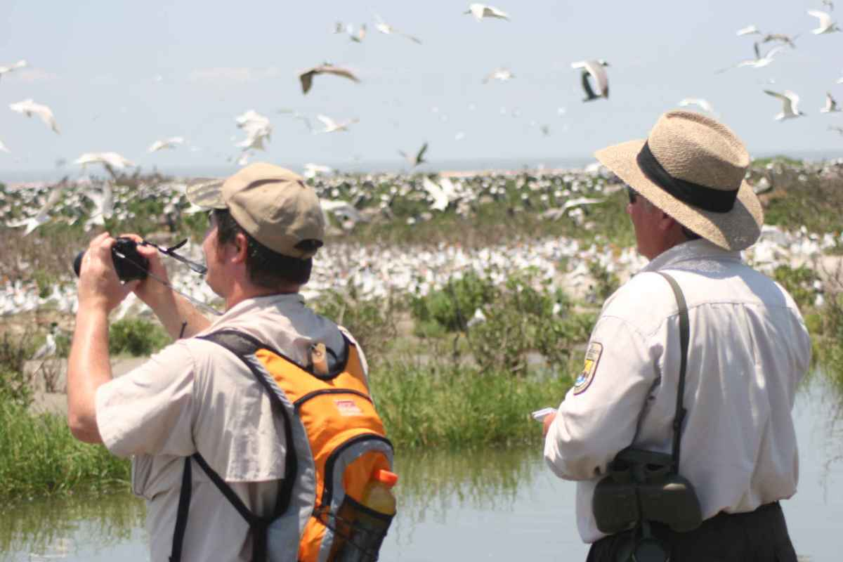 Birdwatching is a great hobby. You will learn about nature and stay fit.