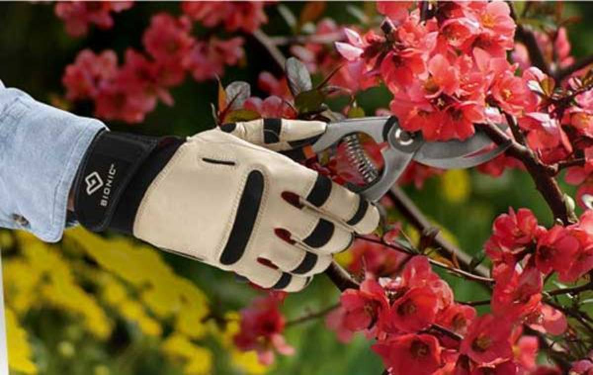 10 Best Gardening Gloves To Ensure Total Hand Protection hubpages