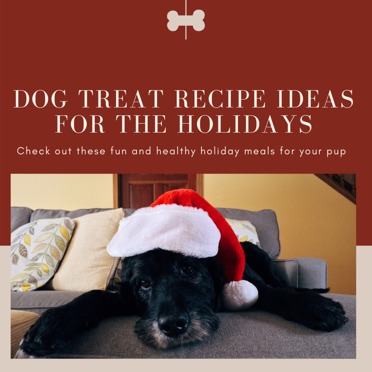 Healthy and Sweet Holiday Treat Recipes for Dogs