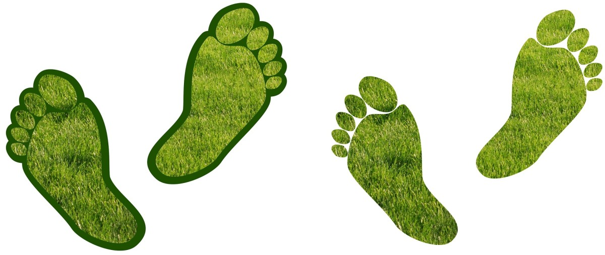 Footprints symbolizing the protection of our environment.