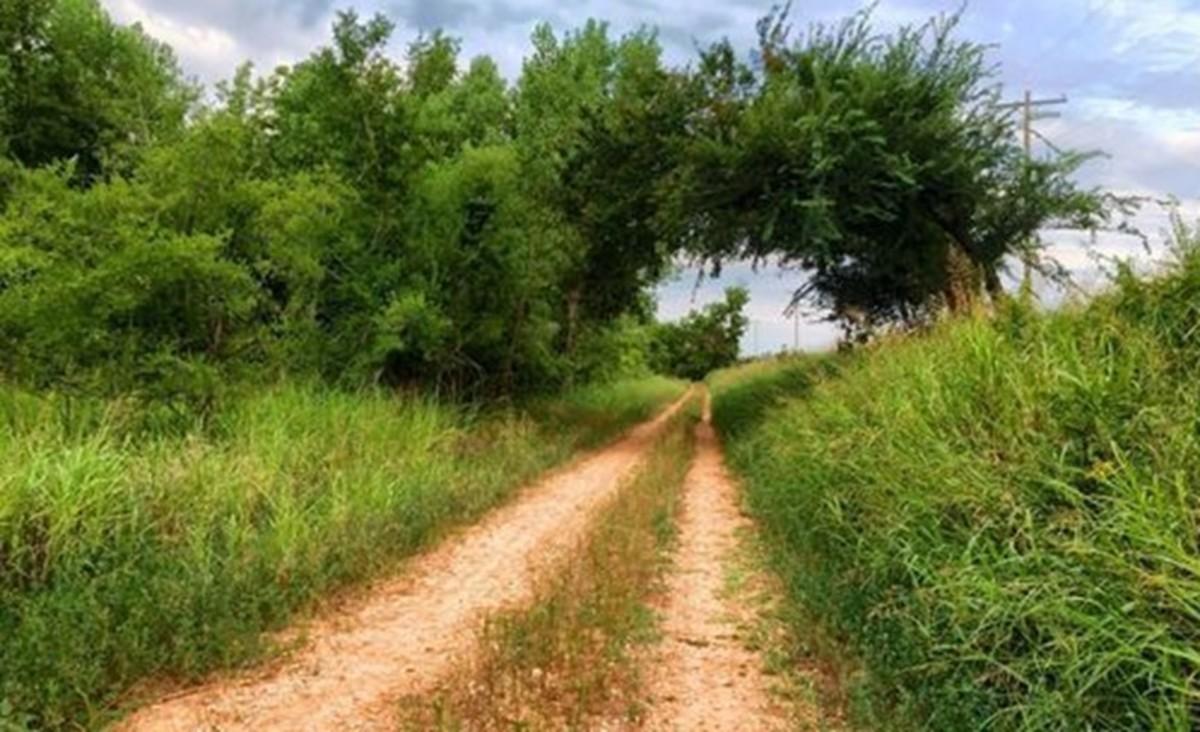 Stinchcomb Wildlife Refuge outside of Bethany, Oklahoma. Photo courtesy of All Trails.