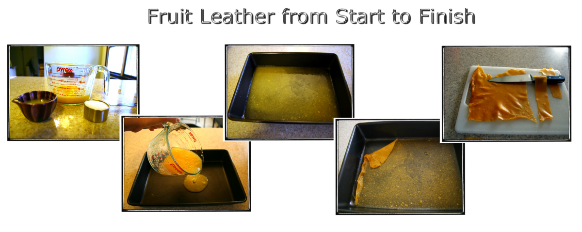Making homemade fruit leather is very simple, and results in a delicious snack! Click to enlarge.