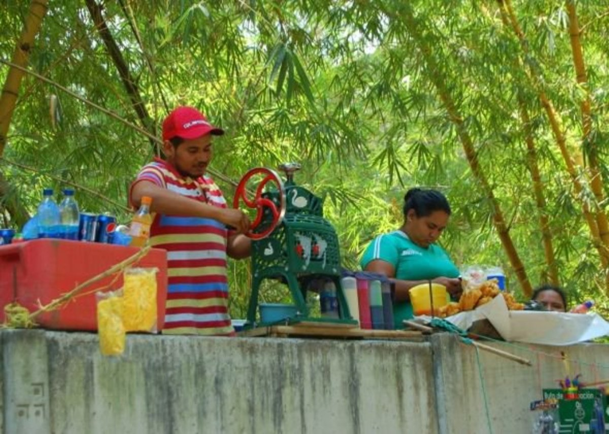 Local entrepeneurship......these people were stood on a path outside the zoo, making fresh fruit juice to order then passing it over the wall.