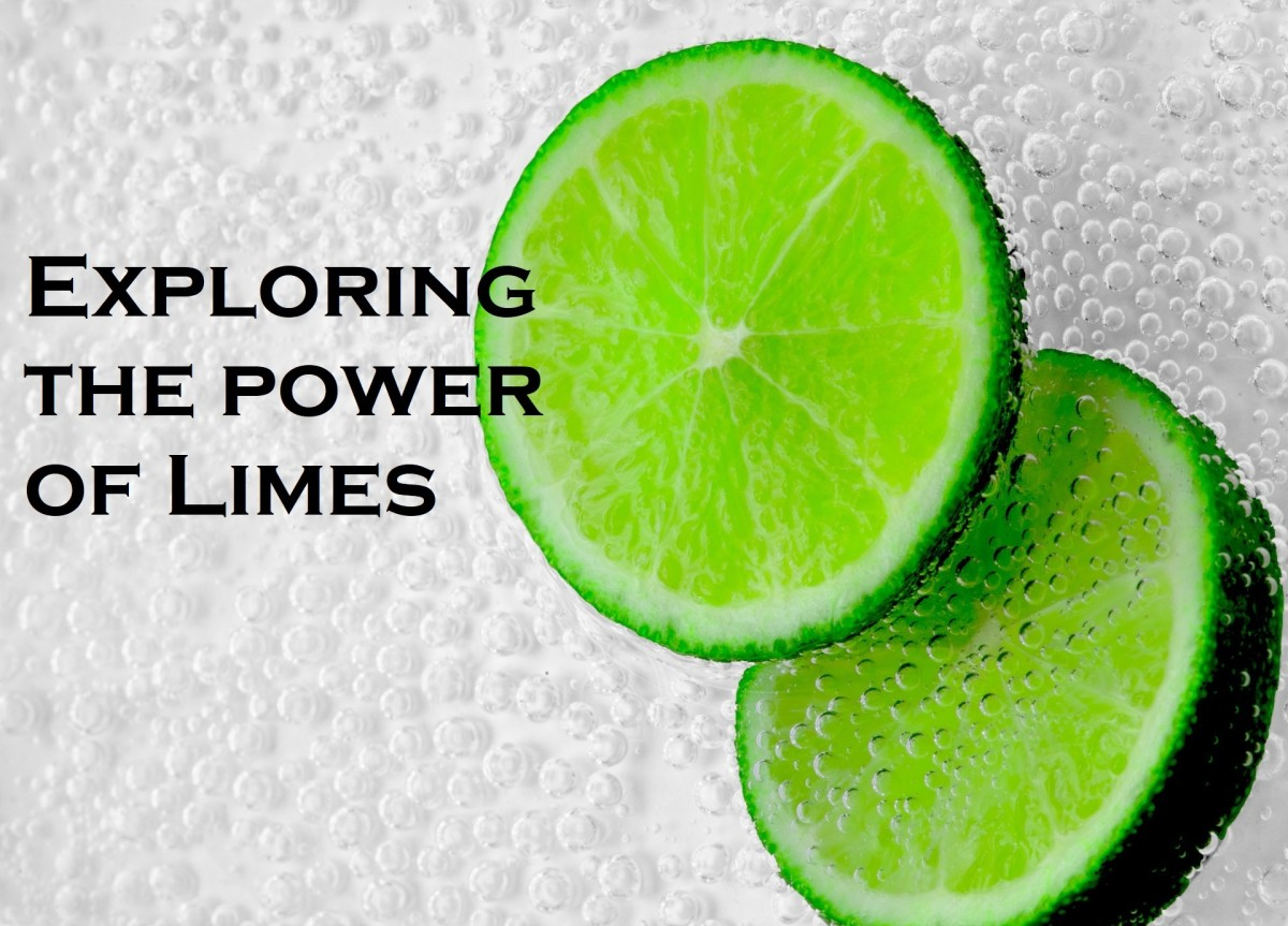 Exploring Limes: Recipes to Help You Harness the Power of Sour