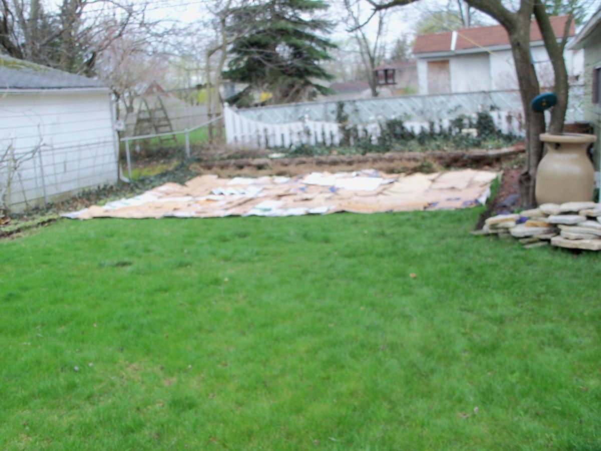 Ran out of newspaper with not even one/third of lawn covered!
