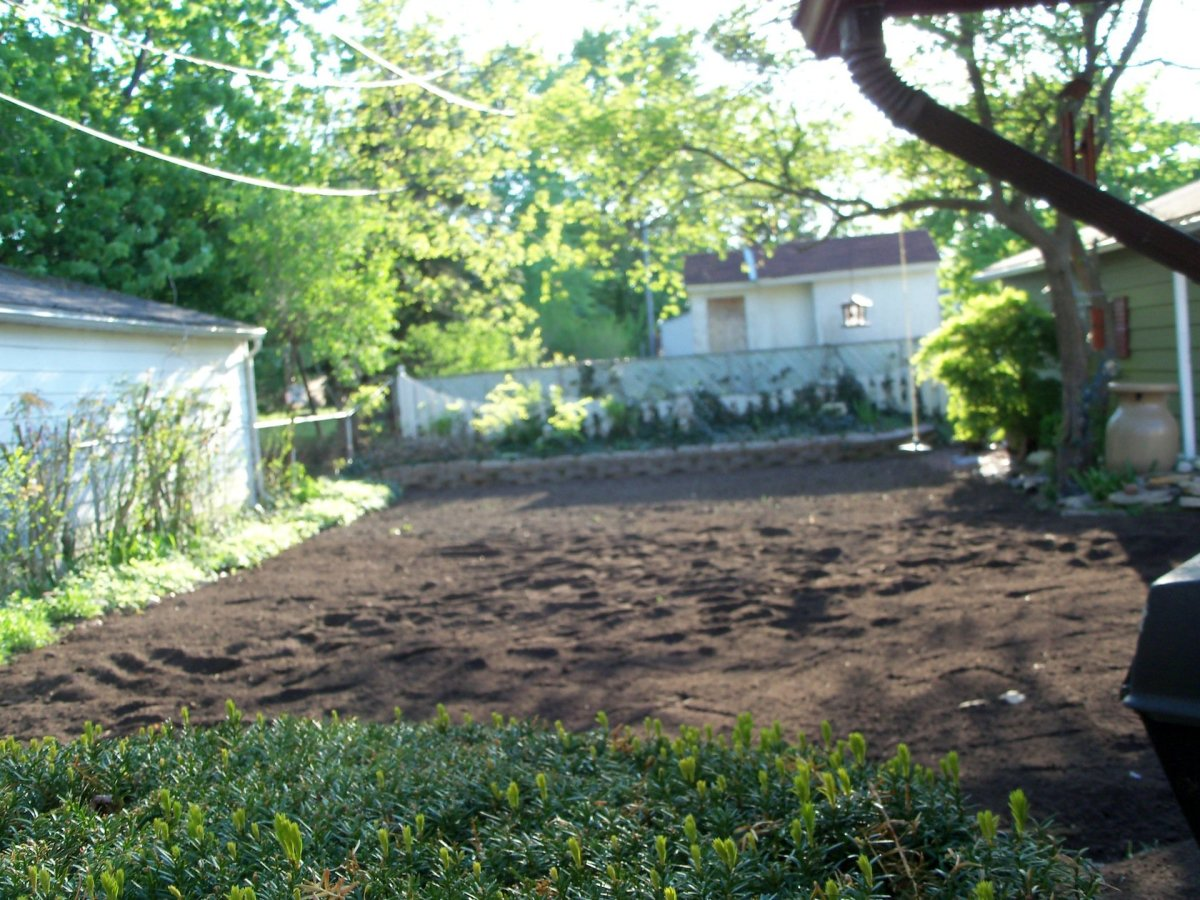 Backyard covered with 10 yards of garden soil