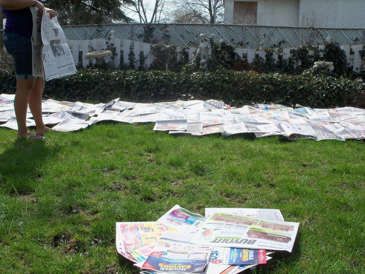 FIRST LAYER: NEWSPAPER or CARDBOARD