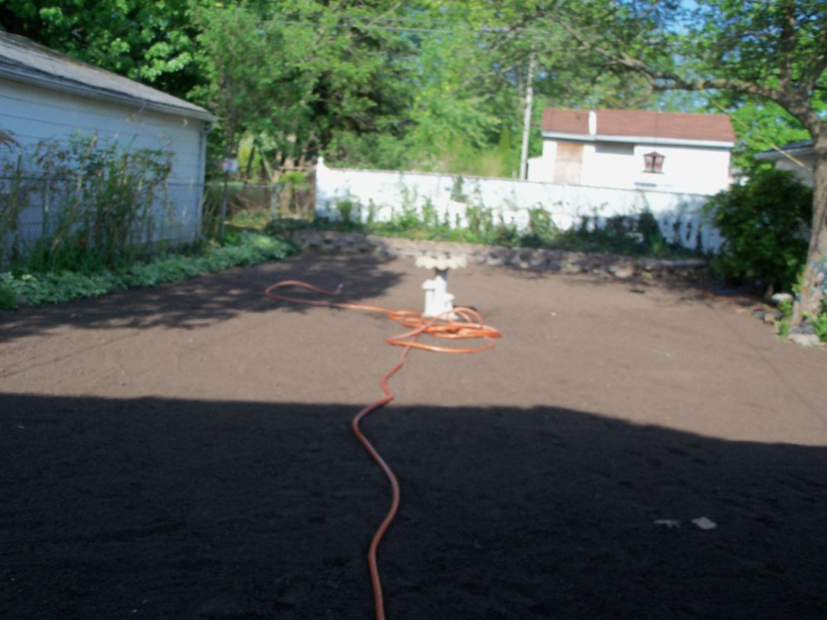 Soil smoothed over- looked great!