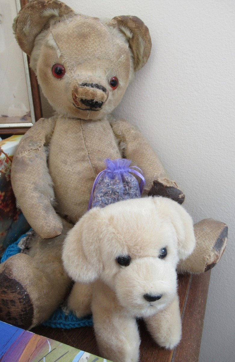 Teddy (a little thread bare) with his cuddly Guide Dog Friend