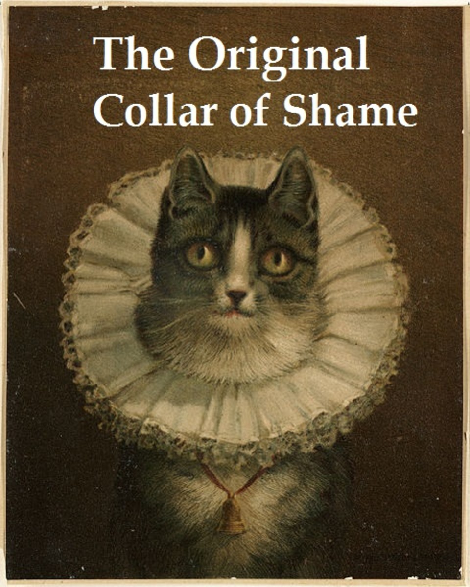 Collars of Shame go way back. Picture Source: http://commons.wikimedia.org/wiki/File:The_Widow_(Boston_Public_Library).jpg