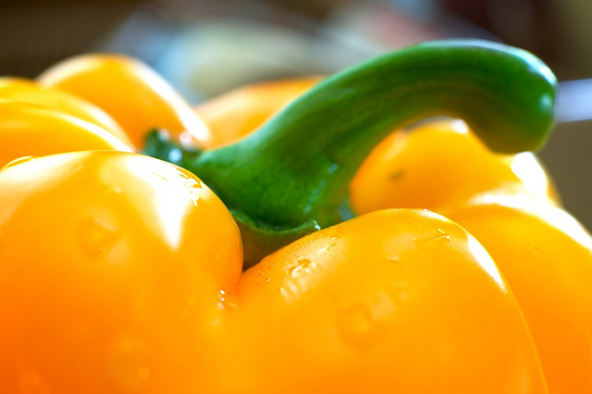 growing-bell-peppers-in-containers